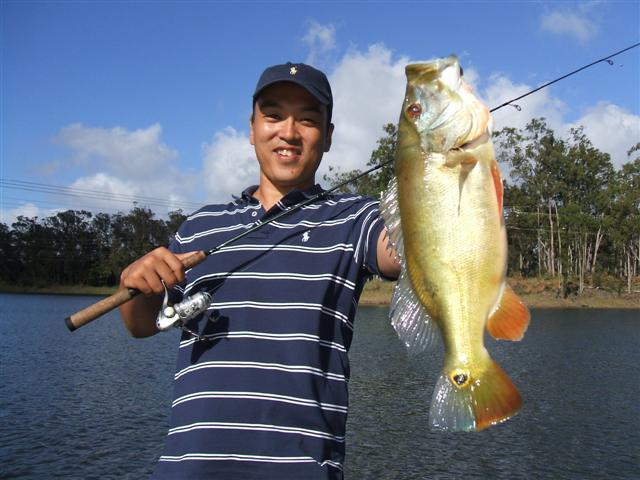 Welcome to hawaii bass fishing the best fishing in hawaii for Fish in hawaii